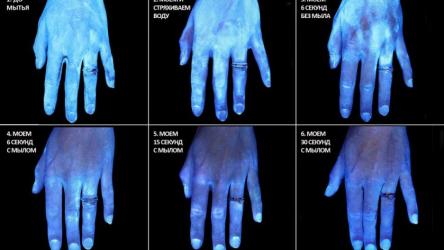 Моем руки правильно: сколько нужно мыть руки 👏, чтобы избавиться от бактерий и вирусов?